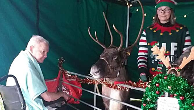 ../Images/Fishers Farm Reindeer at The Hollies Care Home in Southport