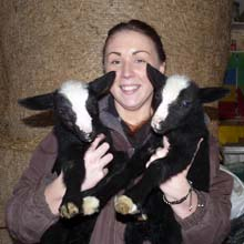 Fishers Mobile Farm - Zwartble lambs with Rachael