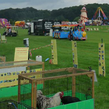Senator International Family Fun Day, Salesbury Hall